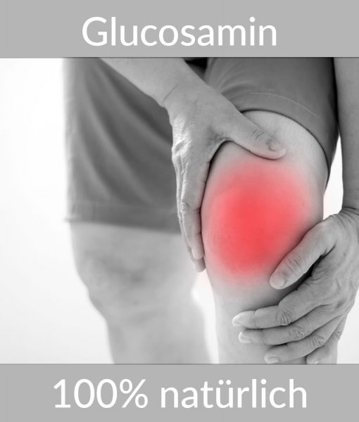 Glucosamin Chondroitin PLUS