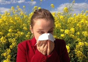 Hilft Schwarzkümmelöl bei Allergien?