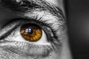 Augen & Sehkraft