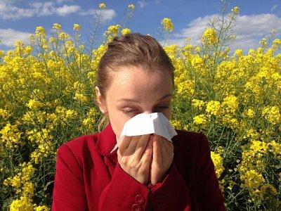 Schwarzkümmelöl bei Allergien