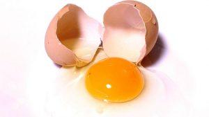 Eier haben viel Cholesterin