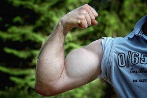 Testosteron ist das männliche Geschlechtshormon