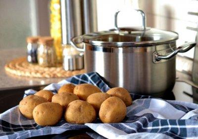 Die Kartoffel ist eines unser wichtigsten Grundnahrungsmittel