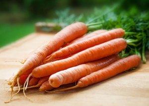 Wissenswertes rund um die Karotten