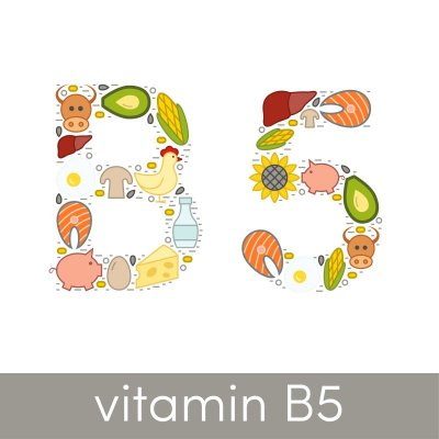 Pantothensäure ais auch als Vitamin B5 bekannt