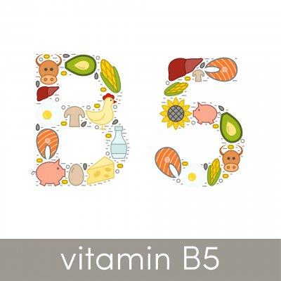 Alles rund um Vitamin B5