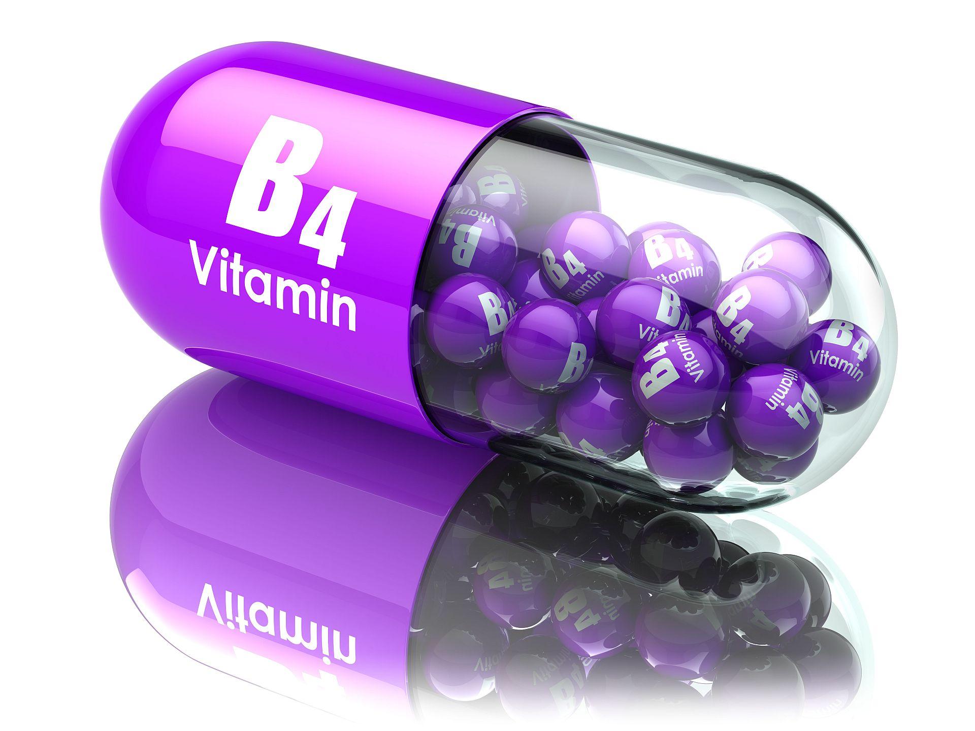 Alles Rund Um Vitamin B4 Vit Wp 100gram