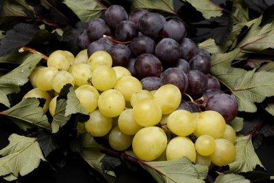 Weintrauben gehört zu den beliebtesten Obstsorten
