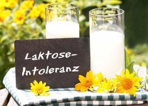 Bifidobakterien bei Laktoseintoleranz - wie Probiotika helfen können