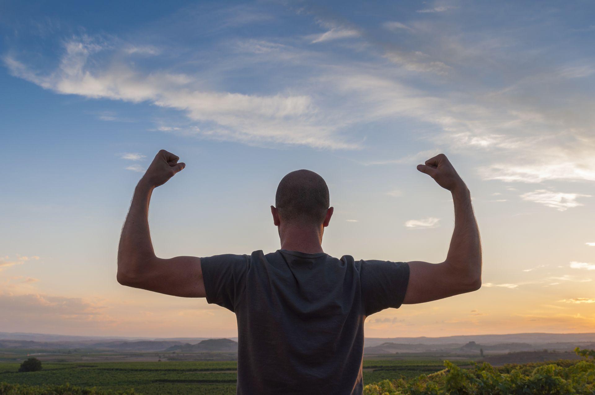 Testosteronspiegel steigern