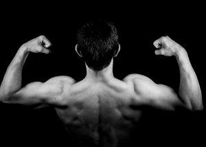 Proteine zum Muskelaufbau - der Motor für Deinen Erfolg