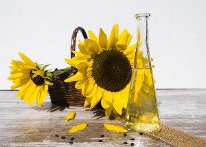 Omega 9 Fettsäuren - alles was man darüber wissen sollte