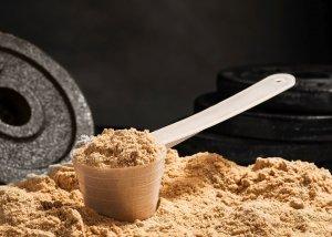 Was ist Casein Protein?